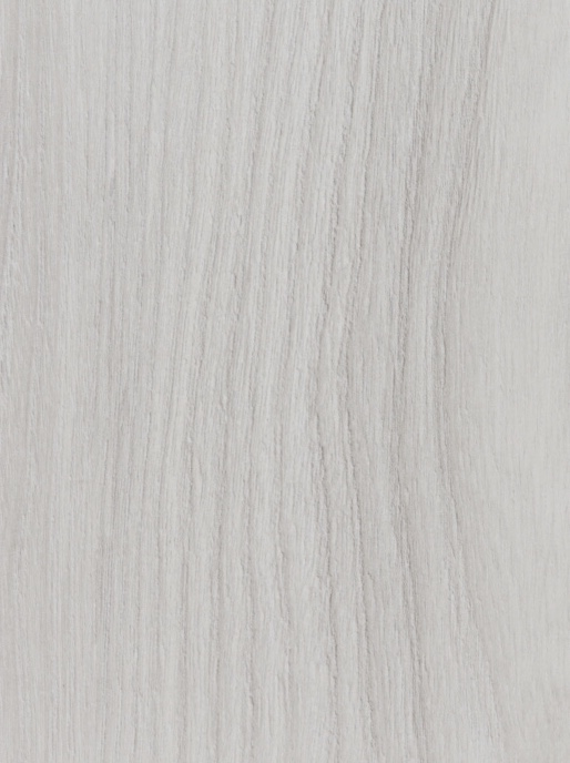 White Cape Elm